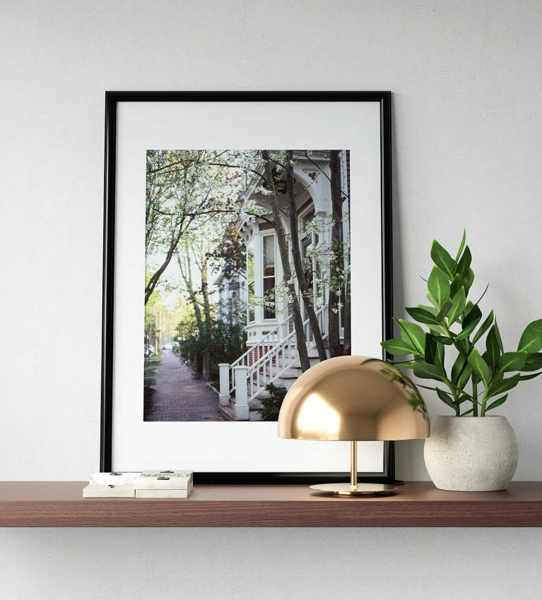 a framed photo print from the paige gribb photography print shop on a floating shelf with a plant and small lamp